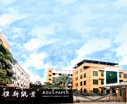 Professional Environmental Paper Cord Manufacturer